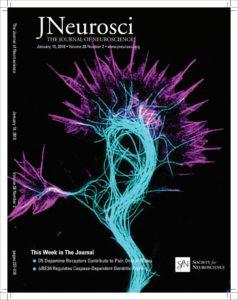 January 10 2018 JNeurosci Cover